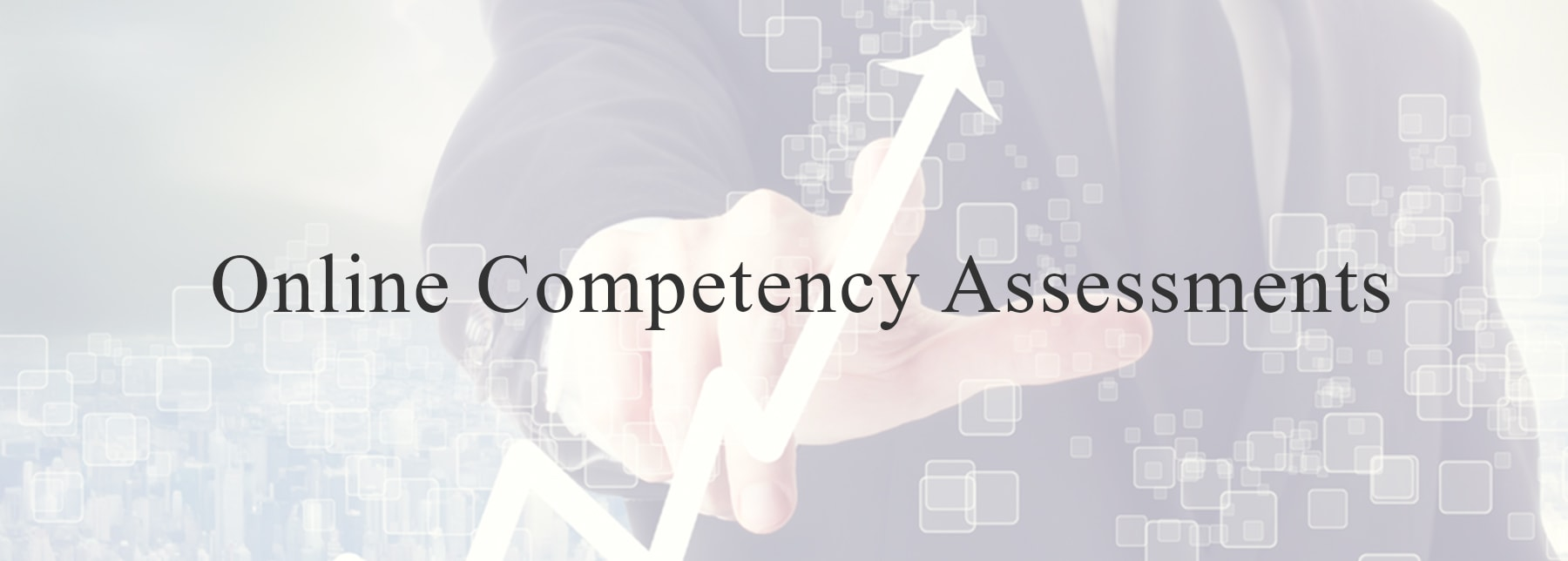 Online Competency Assessments